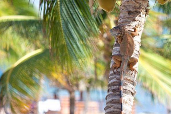 our-hotel-photos-230D833C69-CFA8-E8A8-28A0-D0347CDCFF2C.jpg
